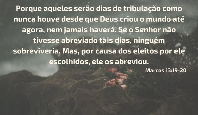 Marcos 13:19-20 Tribulação