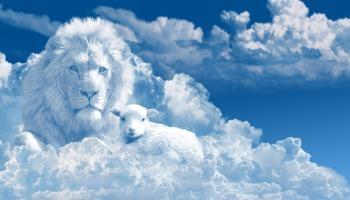 Estudo sobre o Apocalipse: como entender o seu significado?