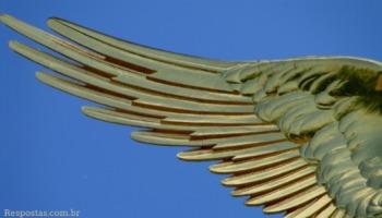 Que tipos de anjos existem? Há uma hierarquia dos anjos?