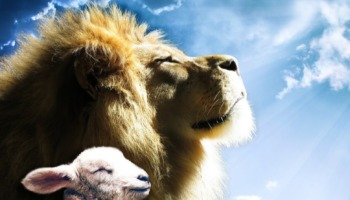 Jesus, o leão da tribo de Judá: o que isso significa?