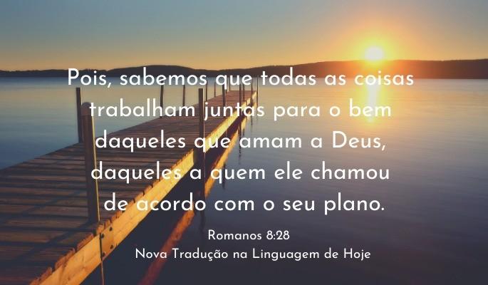 Romanos 8 28 NTLH