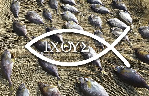 O peixe é um simbolo dos cristãos primitivos.